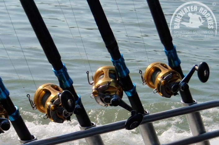 BC Sturgeon Fishing Rods