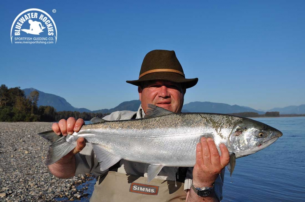 BC Coho Salmon Fishing Info