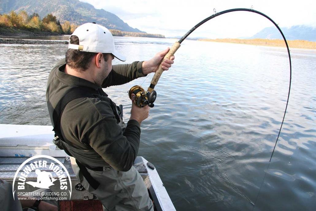 BC Sturgeon Fishing Charters