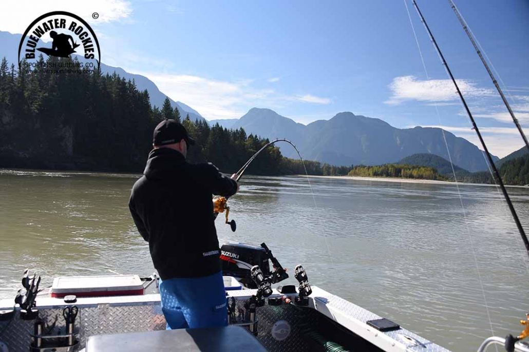 Fraser Valley Sturgeon Fishing Charters