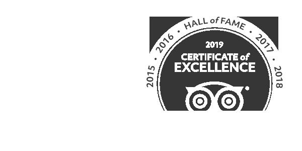 Read All Guest Reviews On TripAdvisor